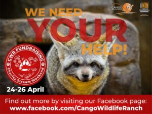 cango wildlife ranch